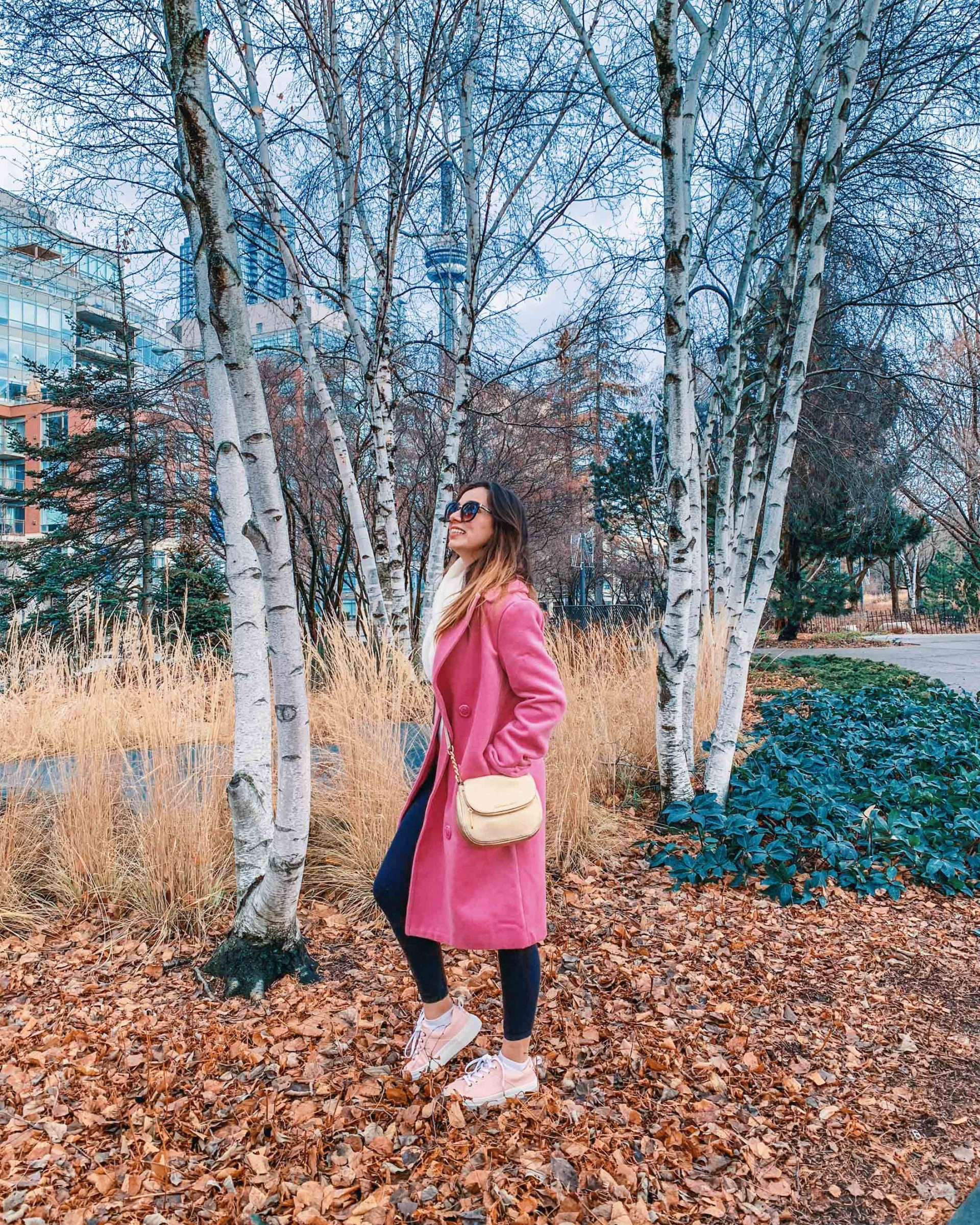 How I turned my blog into my full time work